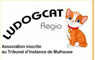 ludogcat